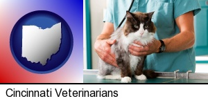 Cincinnati, Ohio - a veterinarian and a cat