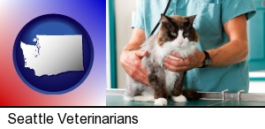 Seattle, Washington - a veterinarian and a cat